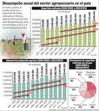 Desempeno-sector-agropecuario-Infografia-Razon_LRZIMA20130504_0057_11