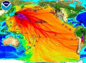fukushima-opt